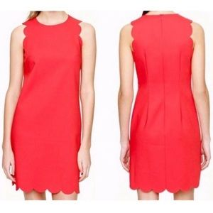 J. Crew Factory Scalloped Sheath Dress Coral s.16